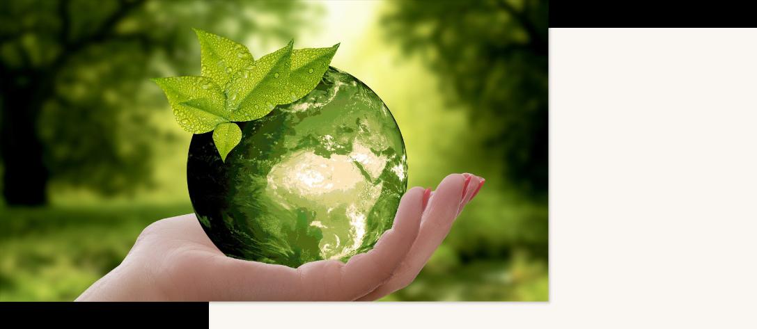 世界共通の持続可能な開発目標を掲げる